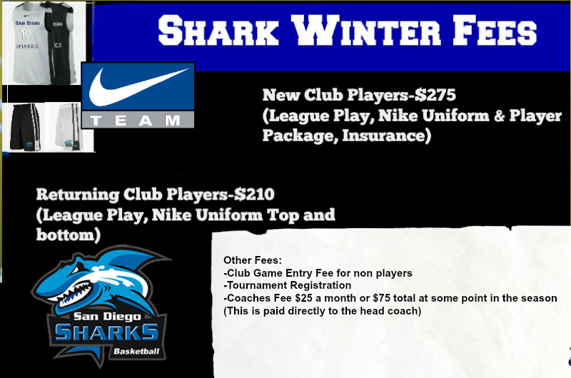 winter team fees new